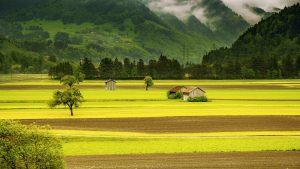 Quels sont les frais de notaire pour un terrain agricole ?